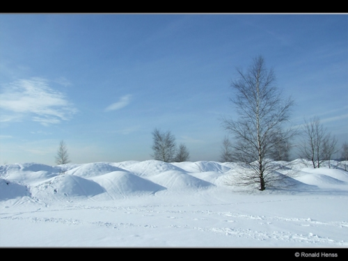 Winterlandschaft Bergehalde Lydia Saarkohlenwald